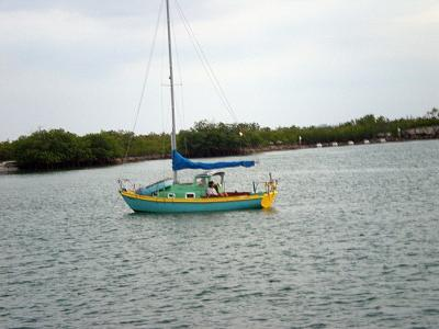 precious sail.jpg