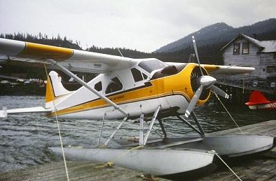 Click image for larger version  Name:beaver at wrangell.jpg Views:98 Size:100.9 KB ID:10148