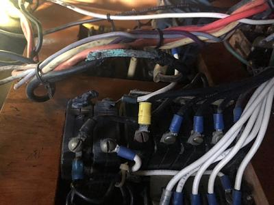 F5679BBC-E7CA-4952-95D1-5CF496300A3C.jpeg