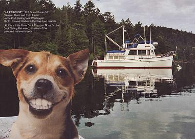 Click image for larger version  Name:boatdog2.jpg Views:108 Size:93.9 KB ID:11193