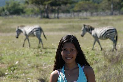 1b Zebra.jpg