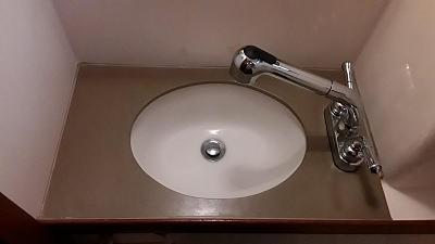 head sink.jpg