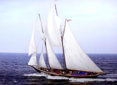 Click image for larger version  Name:bluenose 2.jpg Views:69 Size:464.3 KB ID:1278