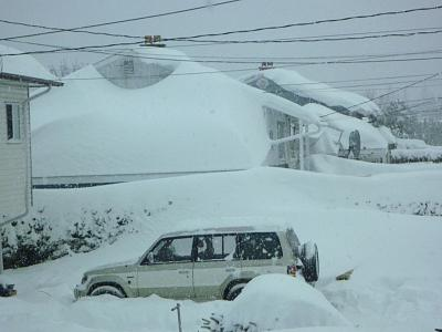 Click image for larger version  Name:front window snow.jpg Views:82 Size:87.0 KB ID:14190