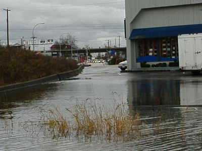 flood waters 005.jpg