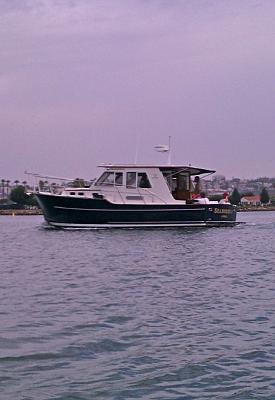 SeaHorse Port.jpg