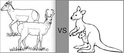 Click image for larger version  Name:P vs Roo.jpg Views:78 Size:53.8 KB ID:18772