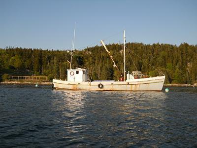 sardine carrier.jpg