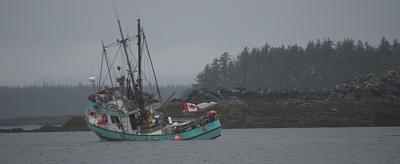 Click image for larger version  Name:Packer Aground.jpg Views:104 Size:38.4 KB ID:22033