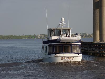 Click image for larger version  Name:Bucky at 9 knots.jpg Views:144 Size:112.7 KB ID:25263