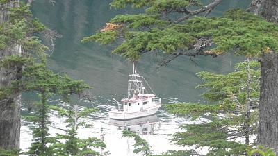 Click image for larger version  Name:boat pic goldmine.jpg Views:83 Size:165.1 KB ID:25946