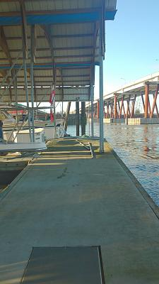 Click image for larger version  Name:dead head Jan 2014 D dock 033.jpg Views:184 Size:90.6 KB ID:26828