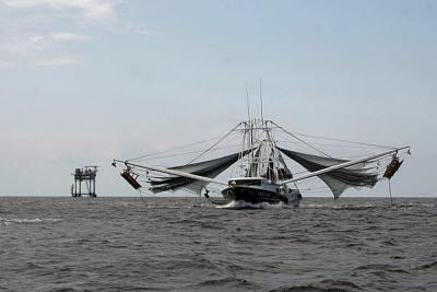 Click image for larger version  Name:Trawler.jpg Views:211 Size:34.1 KB ID:32595