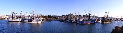 Click image for larger version  Name:Commerical Basin.jpg Views:158 Size:62.7 KB ID:34916