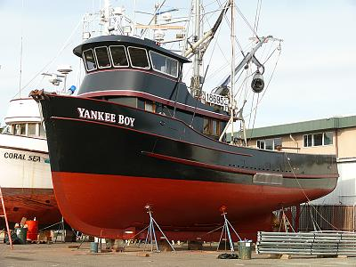 Click image for larger version  Name:Purse Seiner.jpg Views:316 Size:145.5 KB ID:34920