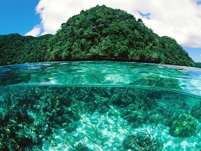 Click image for larger version  Name:Limestone_Island_Palau.jpg Views:117 Size:194.9 KB ID:35496
