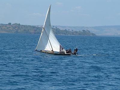 Madagas 7.jpg