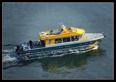 Click image for larger version  Name:Yellow Cat.JPG Views:90 Size:182.9 KB ID:35677