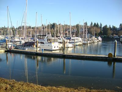 Click image for larger version  Name:Ice on the Water.jpg Views:87 Size:160.2 KB ID:35939
