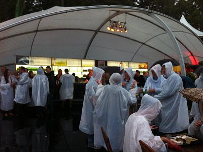 Click image for larger version  Name:sydney festival 007.jpg Views:80 Size:111.3 KB ID:36616