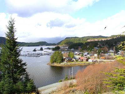 Click image for larger version  Name:Thorne Bay copy 2.jpg Views:83 Size:168.1 KB ID:37509