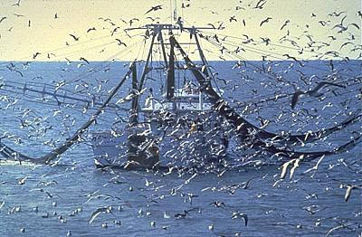 Click image for larger version  Name:Trawler.jpg Views:59 Size:79.4 KB ID:42291