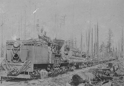 Click image for larger version  Name:Myrtle Point RR 1910.jpg Views:79 Size:134.7 KB ID:43618