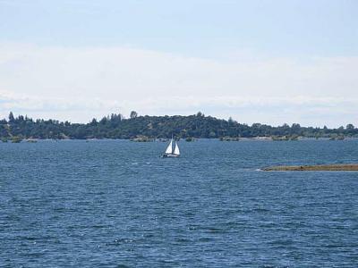 Click image for larger version  Name:lake 007 copy.jpg Views:96 Size:71.9 KB ID:4534