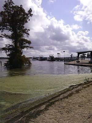 Click image for larger version  Name:Lake Arthur dock.jpg Views:198 Size:130.9 KB ID:46337