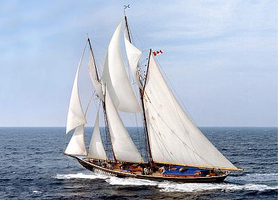 Click image for larger version  Name:Bluenose II.jpg Views:75 Size:74.2 KB ID:47257