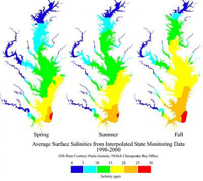 Click image for larger version  Name:bay_salinity.jpg Views:191 Size:91.8 KB ID:47632