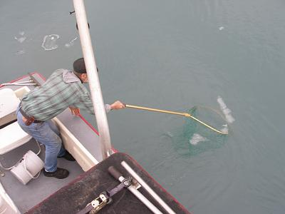 Click image for larger version  Name:fishing 034.jpg Views:60 Size:104.9 KB ID:4895