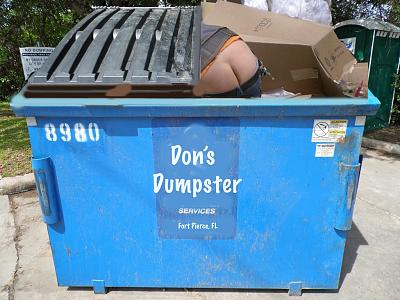 Click image for larger version  Name:don's dumpster.jpg Views:103 Size:109.8 KB ID:49832