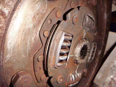 DSC01884 (Small).JPG