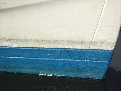 Click image for larger version  Name:Badger bow, after shoveling.jpg Views:185 Size:85.3 KB ID:57742