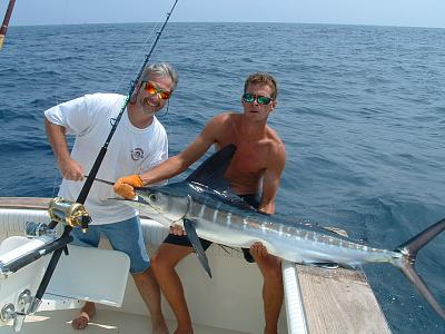 Click image for larger version  Name:White_marlin.jpg Views:73 Size:136.1 KB ID:59676