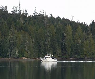 Click image for larger version  Name:trawler 1 copy.jpg Views:617 Size:118.2 KB ID:61086