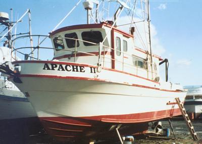 apache 2.jpg