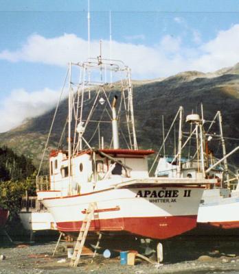 apache 6.jpg