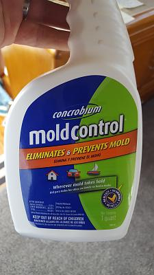 Click image for larger version  Name:Mold.jpg Views:85 Size:82.8 KB ID:63673