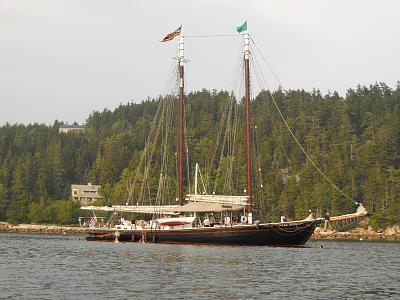 cattleboat2.jpg