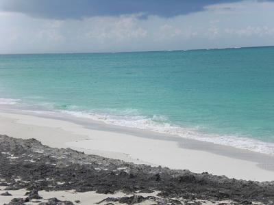 Click image for larger version  Name:man-o-war beach.jpg Views:80 Size:58.9 KB ID:6863