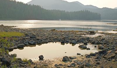 Click image for larger version  Name:Clam Garden, Badger, Rescue Bay.jpg Views:106 Size:127.9 KB ID:70857
