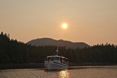 Click image for larger version  Name:Badger at Sunset.jpg Views:109 Size:76.9 KB ID:70858