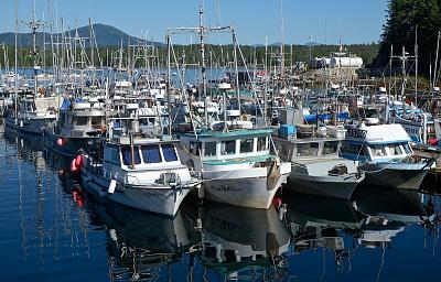 Commercial Boats, Shearwater.jpg