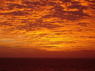 Click image for larger version  Name:carnival cruise 1-2006 109.jpg Views:51 Size:179.2 KB ID:7271