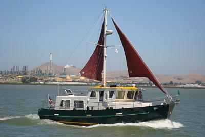 Click image for larger version  Name:coot with sails.JPG Views:83 Size:68.3 KB ID:76240