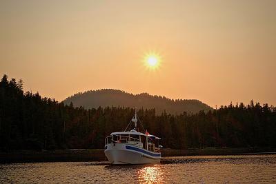 Click image for larger version  Name:Badger at Sunset.jpg Views:132 Size:87.8 KB ID:76930