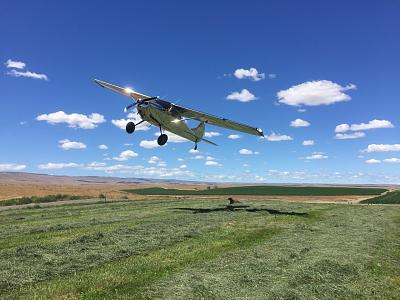 Click image for larger version  Name:Farm plane.jpg Views:138 Size:131.8 KB ID:77804