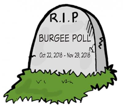 Click image for larger version  Name:Burgee RIP.jpg Views:24 Size:81.1 KB ID:83112